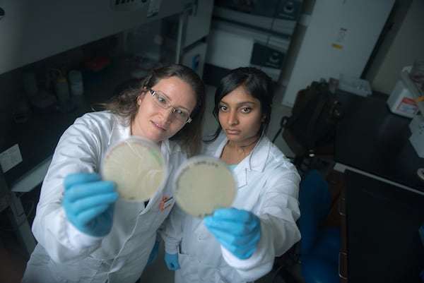A student and her professor inspect petri dishes.