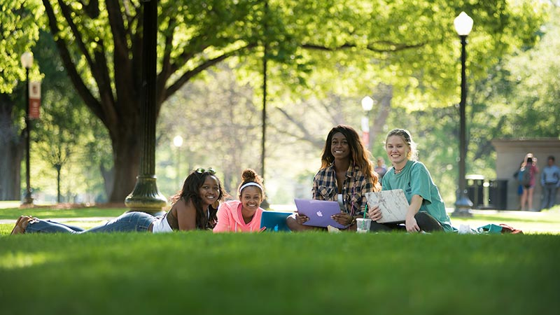 Four students studying outside on the Quad on a sunny day.