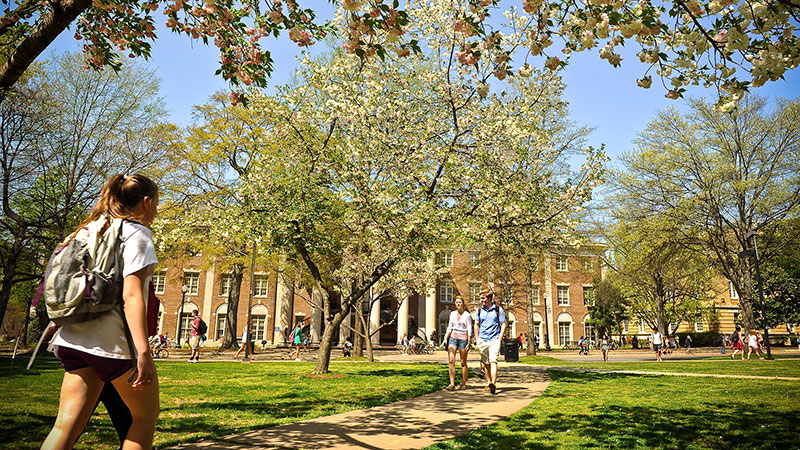 Students walking across the Quad in spring